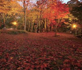 京都府立笠置山自然公園